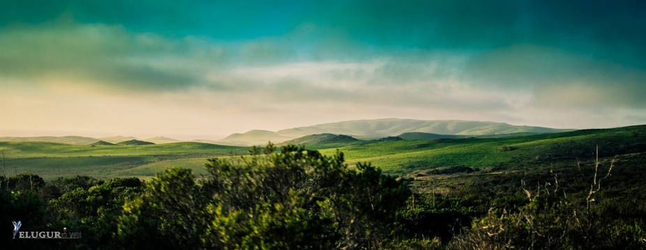 D7000, 35 mm, f/1.8, ISO800. — at Point Reyes, CA.  https://www.facebook.com/YeluguriEntertainm...