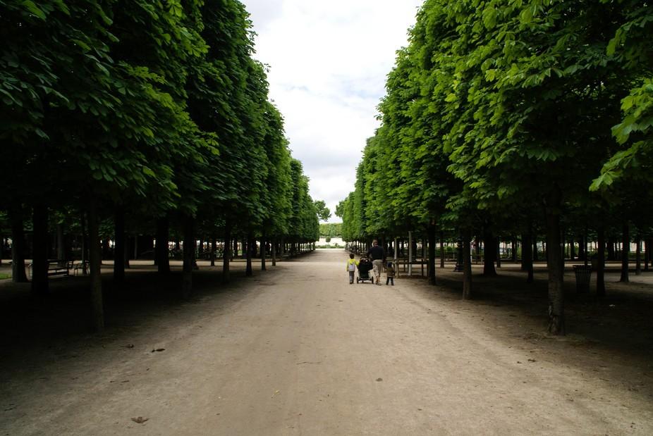 Jardin Tulleries