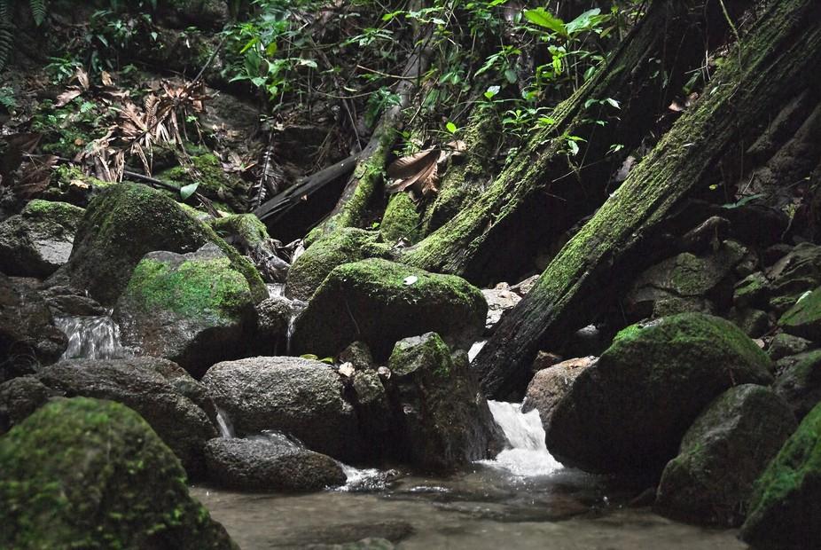 Northern Oriente Ecuador