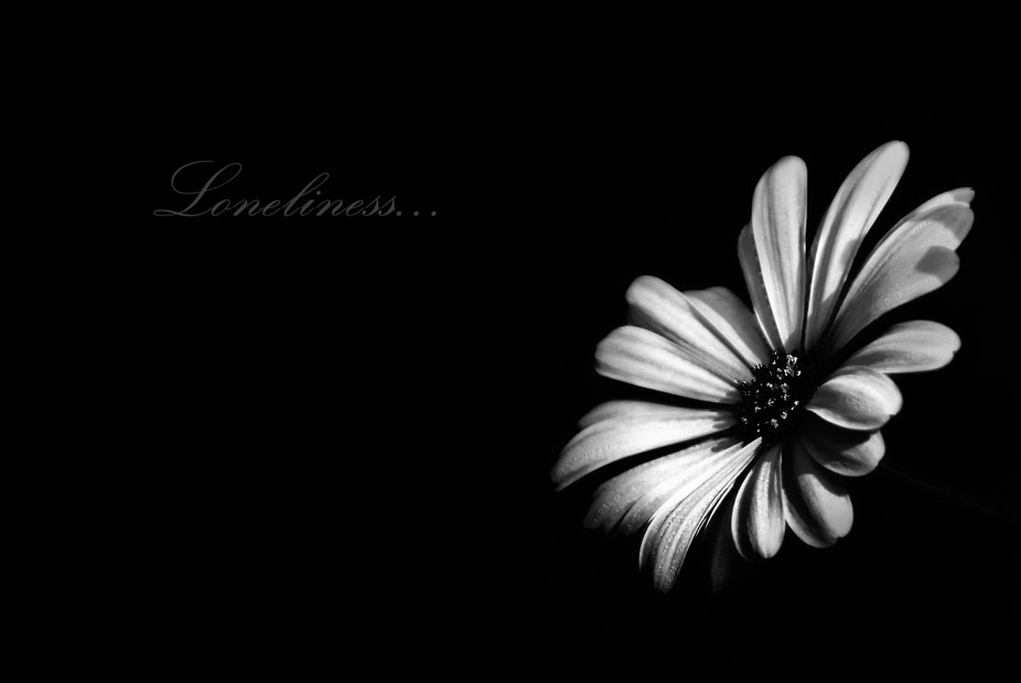 Loneliness bw