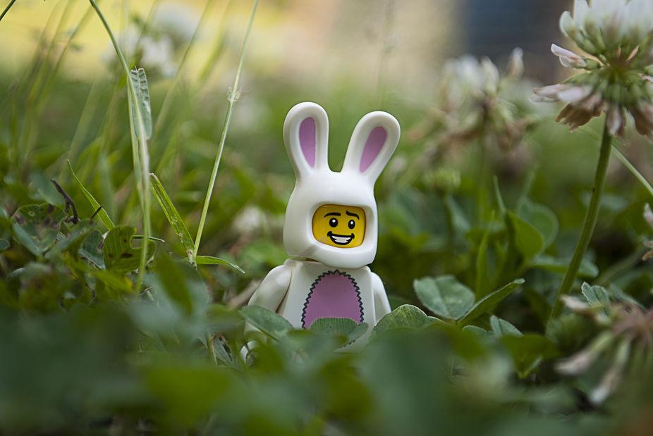 LegoRabbit
