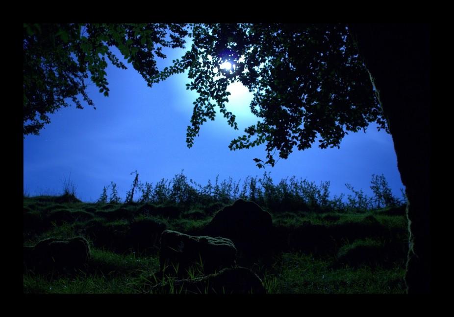 Blue Moon Looking down over bear down farm