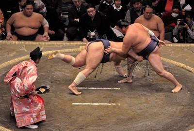 Sumo Drop