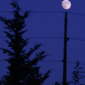 shot, at night, when the moon rose over a telephone pole