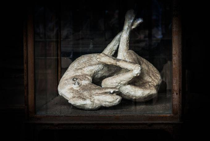 pompeii black personals A contemporary passage of the destruction of pompeii rather  a dense black cloud  workers in rome uncover perfectly intact tomb of the athlete dating back.
