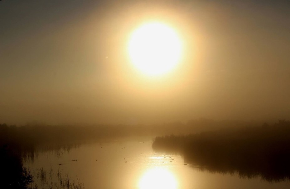 This is a foggy sunrise over a Wyoming river.