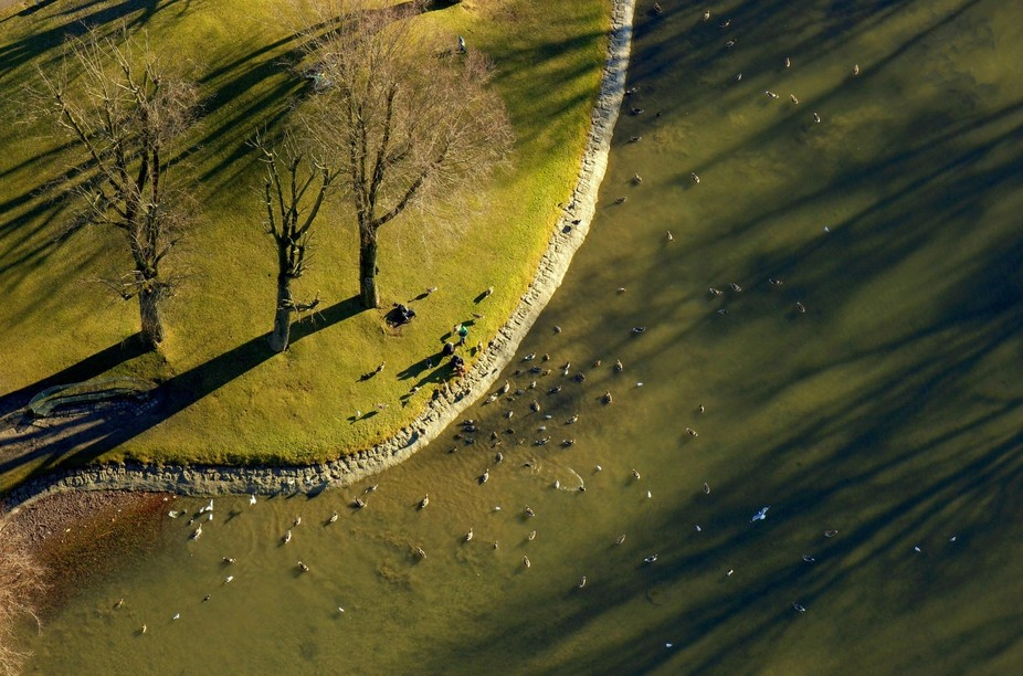This is an image captured on a sunny winter day in Olympiapark ( München, DE). When I got up to ...