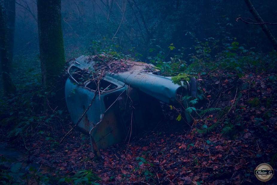 Forest Dump