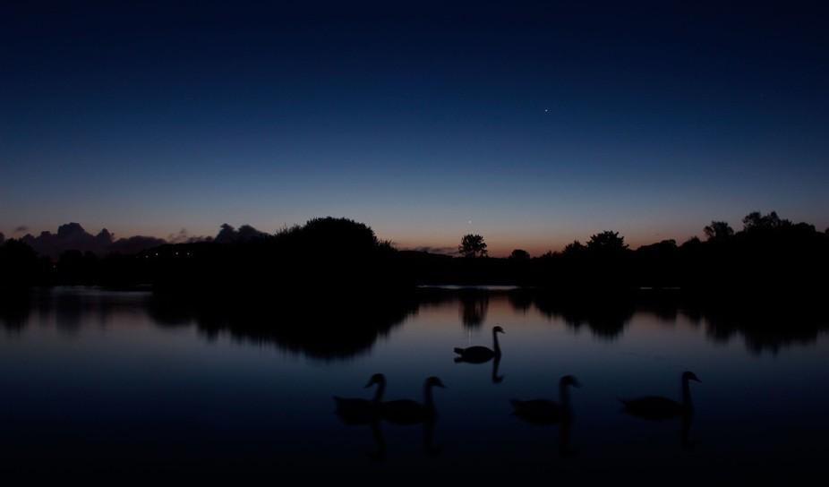 Le lac des cygnes au petit matin