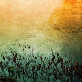 Marsh Abstract