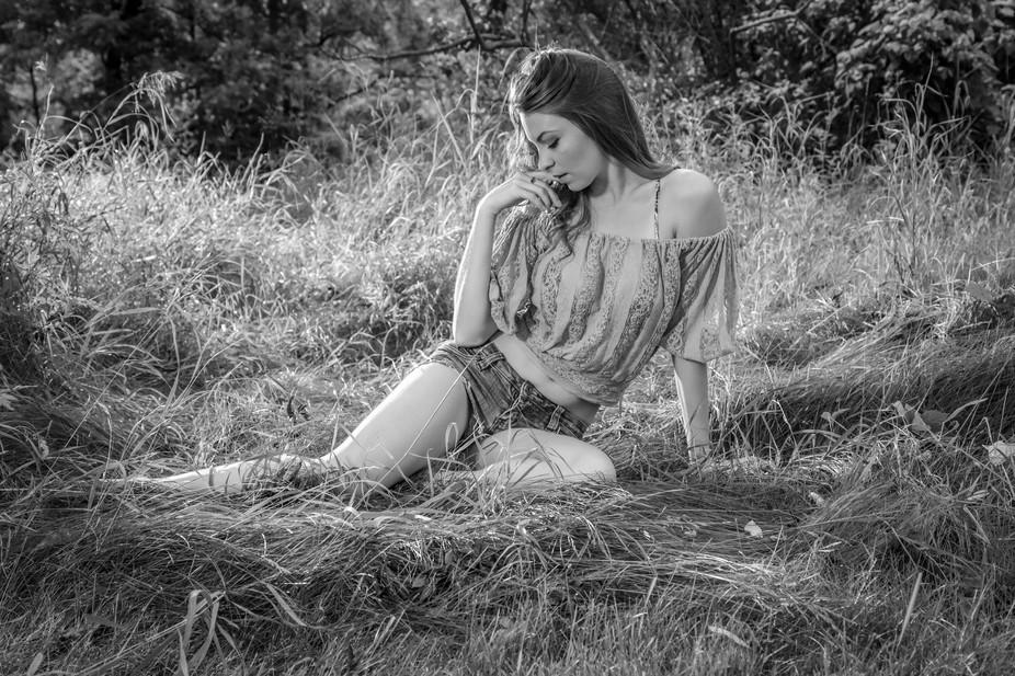 Miss Tara in meadow