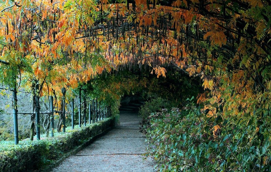 one of my lovely places in Italy... the place where i can think about something... really that ve...