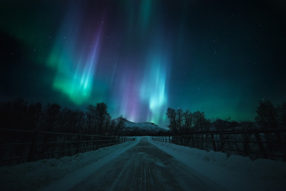 The majestic northern lights dances across the nightsky at Nordreisa, Norway