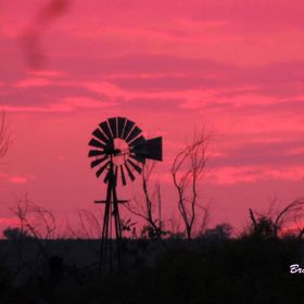 What a beautiful pink sky I had for this sun set. The windmill was an added bonus