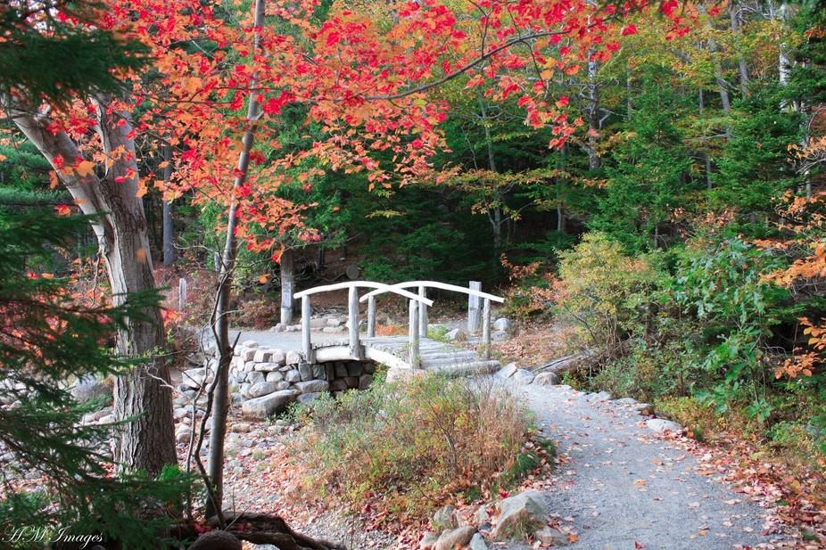 Acadia National Park-Maine 2014  3