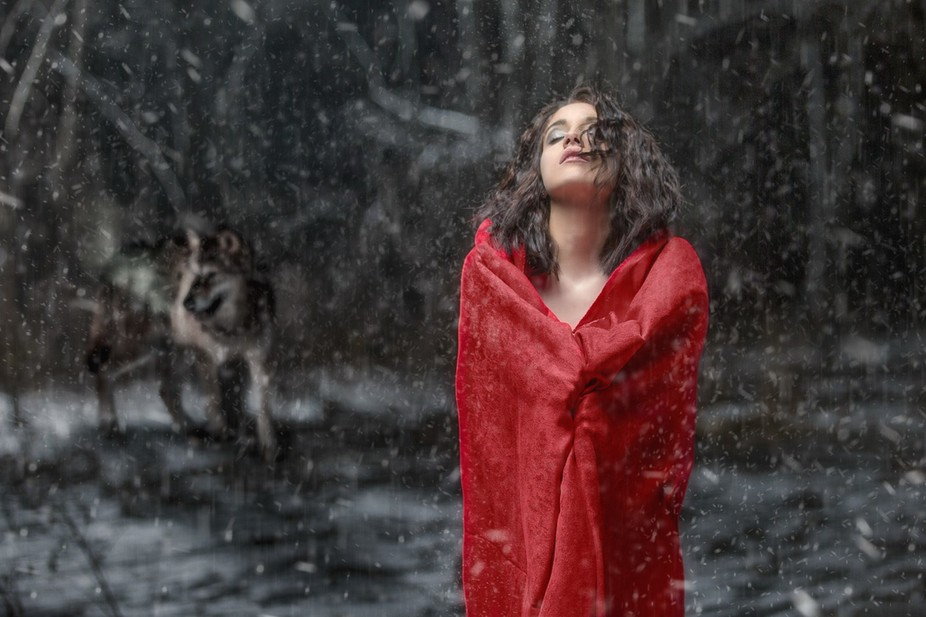 Made in -15 weather with snow on the ground.  falling snow and wolf added in post