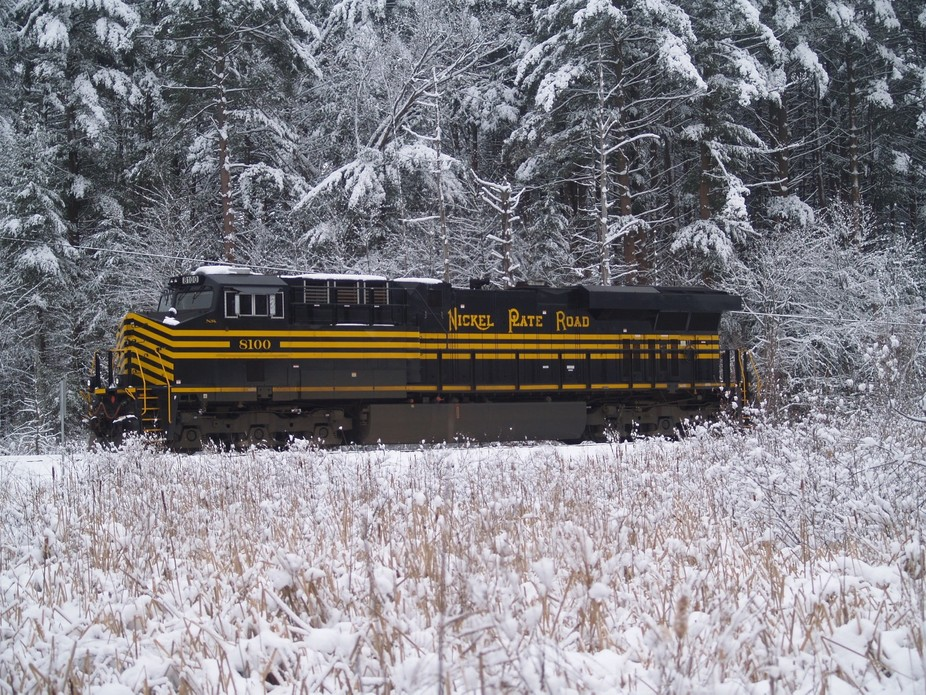 NS#8100 at the Willows