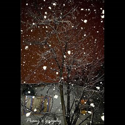 The snowfall..!