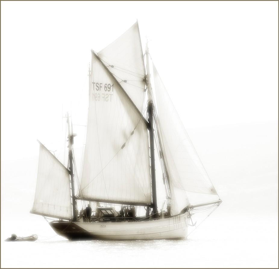 TSF 691