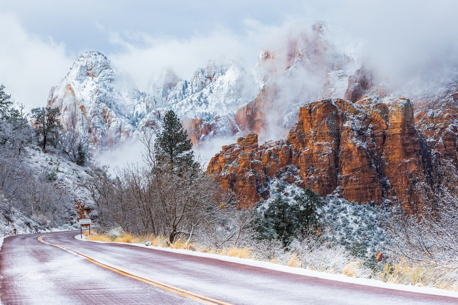 """I woke up to 6"""" of fresh snow so I drove a few miles up to Zion National Park in hopes o..."""