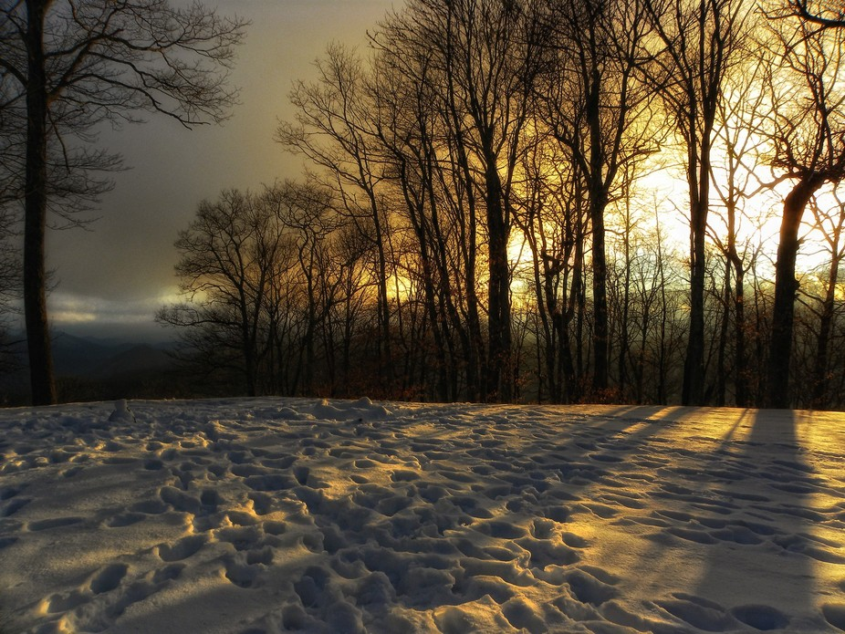 Winter sunset at the Thomas Divide Trailhead off of Newfound Gap Rd, Great Smoky Mountain Nationa...