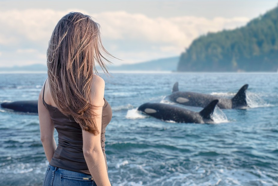 When I travelled along the 101 road in California, we saw some whales from the Cliffs... The scen...