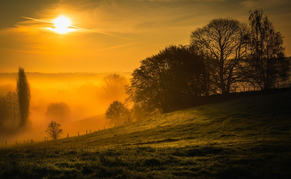 The sunrise of that particular morning was boring. But when the sun was a bit higher in the sky, ...