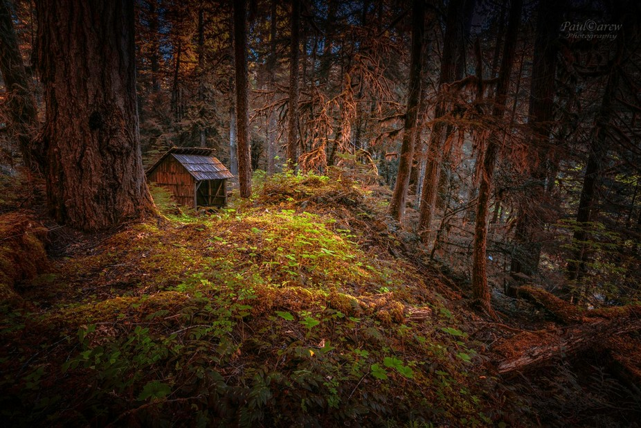 Rustic shelter in the Santiam Wilderness, Oregon