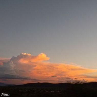 Gator cloud