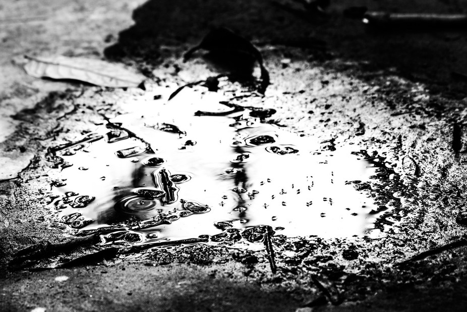 Insect on the road water. I think this is the real world image.