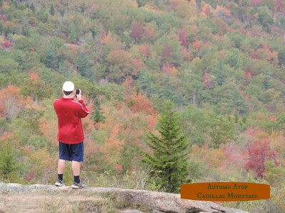 Cadillac Mountain In Autumn