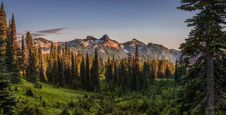 An image taken near sunset at Mount Rainier National Park
