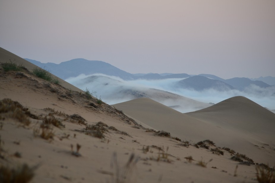 Early morning in the Hartmans vlakte in Namibia.  Truly a magical morning