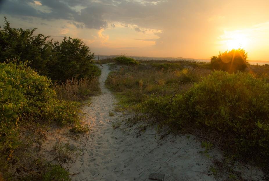 A path to the beach at Edisto Island, SC