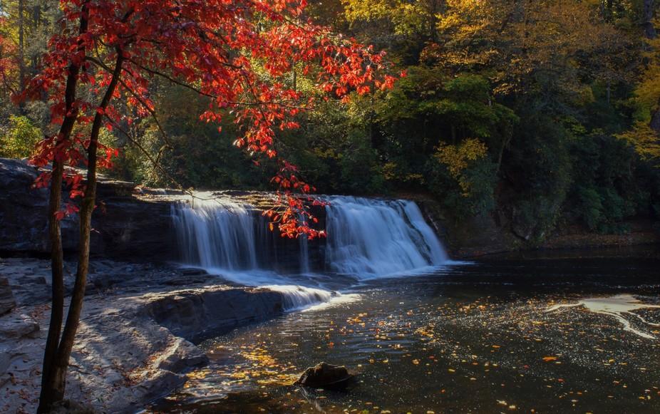 Dupont State Forest, Western North Carolina