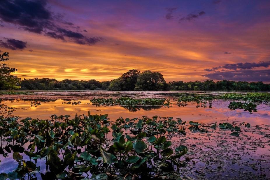Croons Lake in Massapequa NY Splendid Sunset