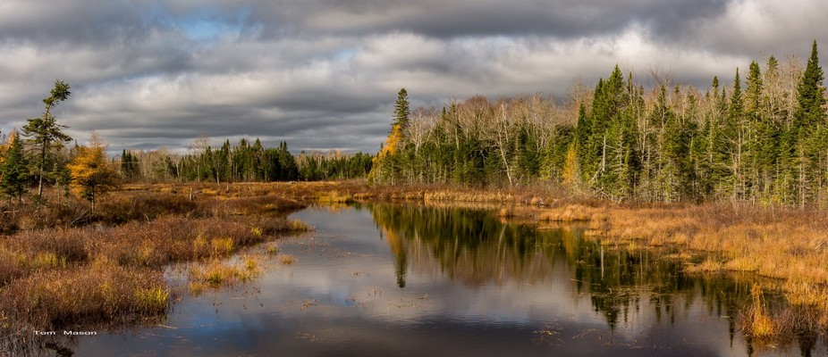 Rich autumn colors in late afternoon light add warmth to the White Beaver Stream