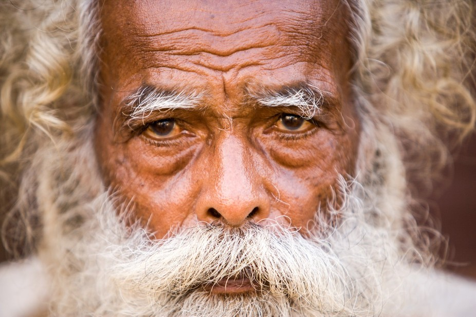 Portrait of an elderly Indian gentleman