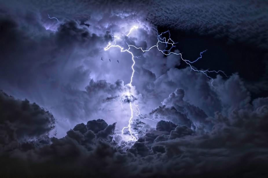 Multiple flashes illuminating the same bat multiple times within a single exposure.