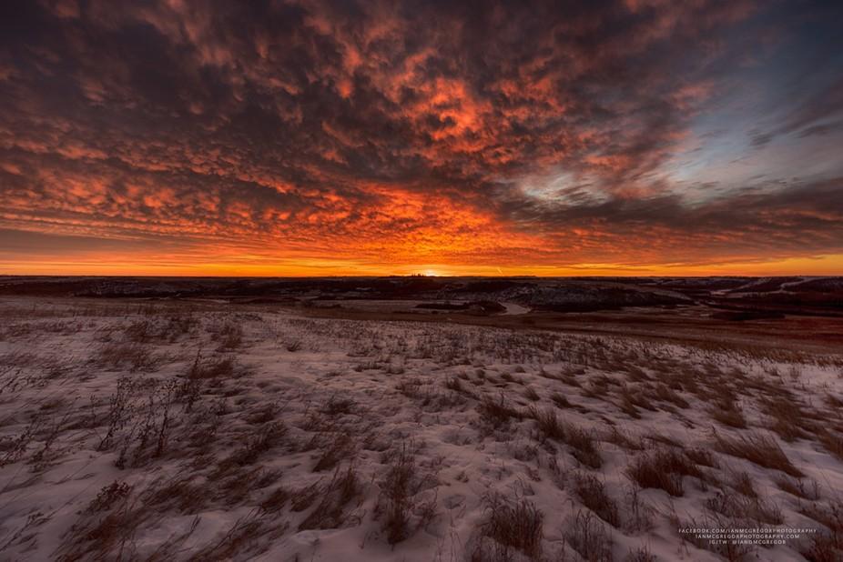 Winter sunrise over the Wascana Valley Nature Recreation Site in Saskatchewan, Canada.