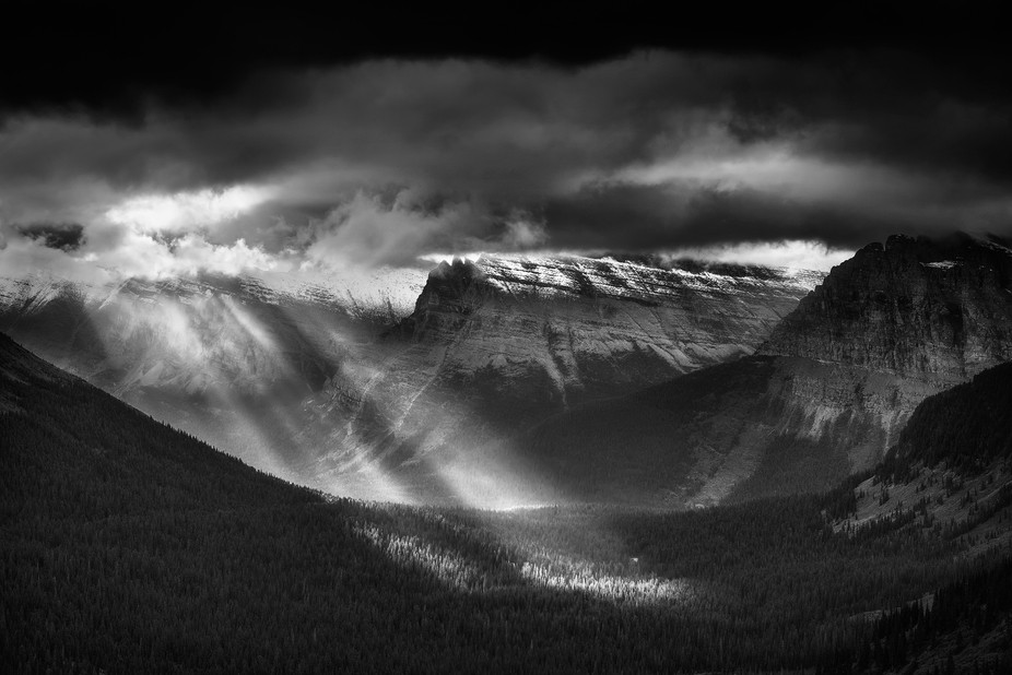 Totally socked in 20 minutes before this shot at Logan Pass