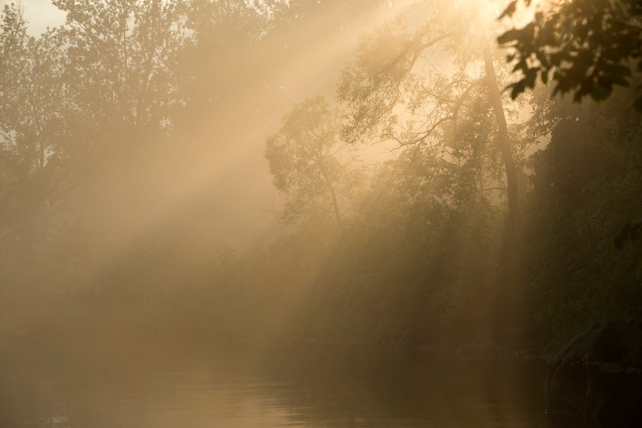 Taken close to sunset as the fog rolled off the water. It was a fleeting moment in time as the su...