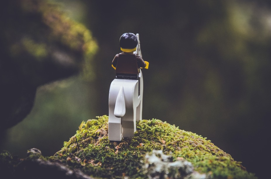 Simply a lego landscape.