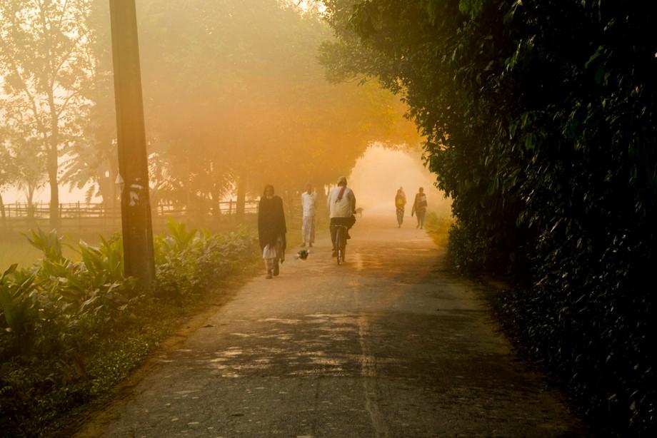 A Winter Morning at Sarishabari, Jamalpur, Bangladesh