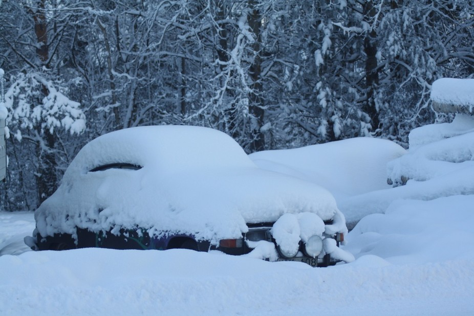Oldtimer Saab in the wood, hidden by the first snow. The winter has arrived late. The sun can&amp...