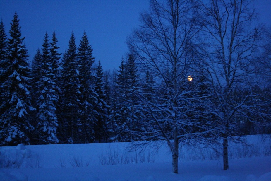 A big surprice. I woke up at night and I saw the full moon. It was amazing how much light the moo...