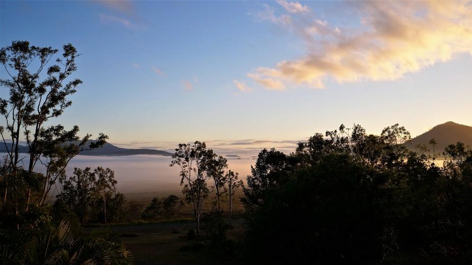Taken in Mount Julian, Queensland Australia as the Sun rises on a misty morning.
