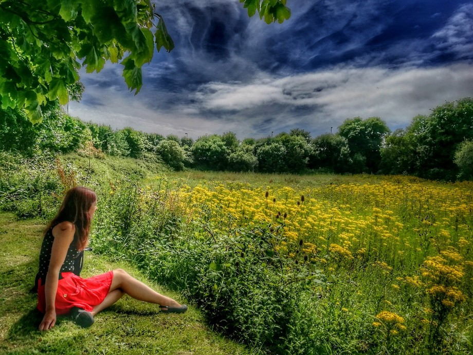 She sat back and watched the summer. It didnt last long