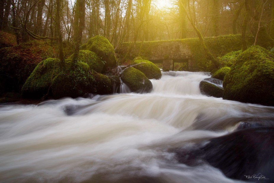 One of my favourite places to photograph, it offers ruins, a lovely woodland and a fab river runn...