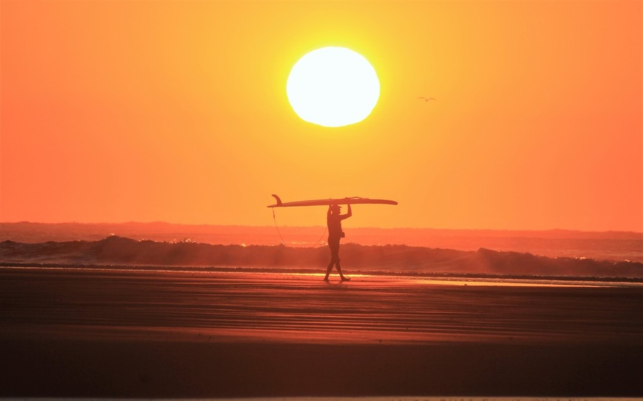 The anticipation of a surf in the golden glow of an early morning sunrise.